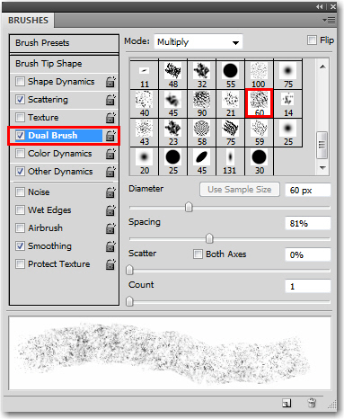 Adobe Photoshop: Add the Dual Brush setting.