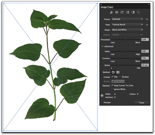 Adobe Illustrator CS6: On the left, a bitmap image in Illustrator. On the right, the intuitive new Image Trace panel.